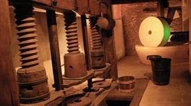 Museo della Civiltà dell' Ulivo - >Trevi