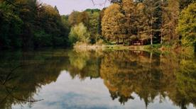 Parco naturale regionale dei Boschi di Carrega - >Collecchio