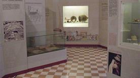 Museo Civico della Communitas Diani - >Diano Marina