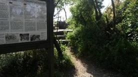 Il Sentiero Rilke - >Duino Aurisina