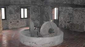 Museo dell'Olio di oliva e della Civiltà contadina di Zagarise - >Zagarise