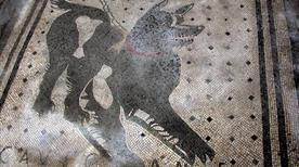 Casa del Poeta Tragico - >Pompei