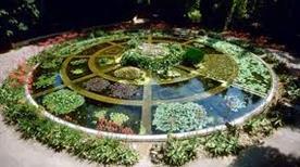 L'orto Botanico - >Palermo