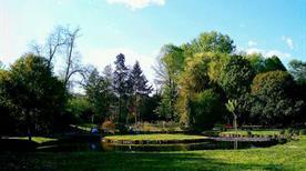 Giardino e Roseto di Villa Margherita o Villa Manfrin - >Treviso