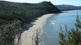 Spiaggia Cala Civette - >Punta Ala