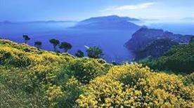 Monte Solaro - >Capri