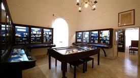 Museo Ignazio Cerio - >Capri