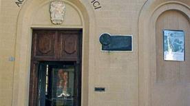 Museo di Storia Naturale e dell'Accademia dei Fisiocritici - >Siena