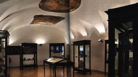 Museo Archeologico dell'Agro Nocerino - >Nocera Inferiore