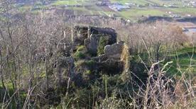Torre di Castelnuovo - >Meldola