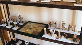 Museo delle Erbe - >Veroli