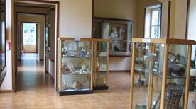 Museo di Paleobotanica ed Etnobotanica dell'Orto Botanico - >Napoli