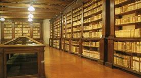 Museo Civico Il Correggio - >Correggio