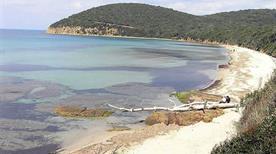 Spiaggia Cala Violina - >Alghero