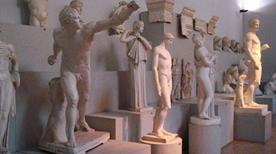 Museo Civico di Medicina - >Medicina
