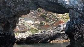 Punta del Diavolo - >Isole Tremiti