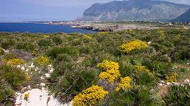 Riserva Naturale Orientata di Capo Rama - >Terrasini