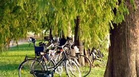 Parco del Mincio - >Mantova