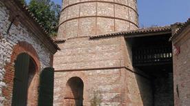 Museo Geopaleontologico Cava Bomba - >Cinto Euganeo