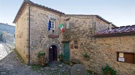 Museo del Castagno - >Pescaglia