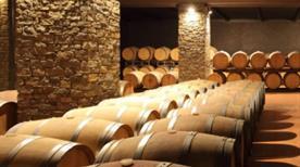 Azienda Agricola Conterno - Fantino - >Monforte d'Alba