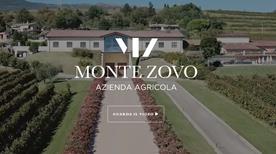 Cantina Vinicola Monte Zovo Verona - >Caprino Veronese