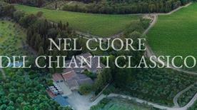Chianti Trambusti S.R.L. - >Firenze