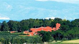Torre Quarto Cantine Dal 1847 Srl - >Cerignola