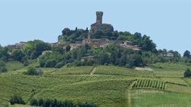 Valenti Vini - Agienda Agricola a Cigognola (Pavia) - >Cigognola