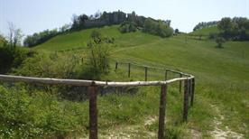 Torre Boriano resti - >Sala Baganza