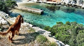 Spiaggia Cala Dragunara - >Alghero