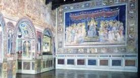 Museo Civico - >Siena