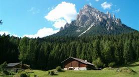 Parco Naturale Paneveggio - >Bellamonte