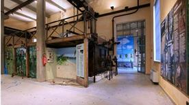 Museo di Storia Naturale - >Piacenza