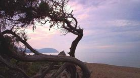 Spiaggia di Rimigliano - >San Vincenzo