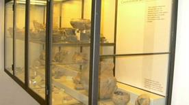 Museo della Terramara - >Poviglio