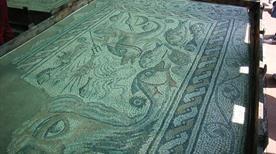 Museo Archeologico Nazionale - >Ortonovo