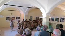 Museo Archeologico del Finale - >Finale Ligure
