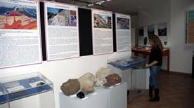 Museo di Storia Naturale Aquilegia - >Assemini