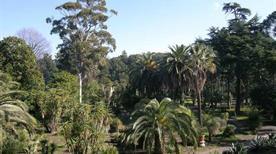 Orto Botanico - >Portici