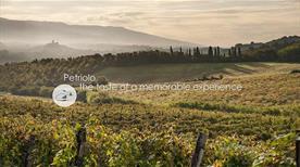Fattoria Petriolo - >Rignano Sull'Arno