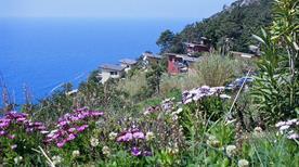 Bosco e Spiaggia del Villaggio la Francesca - >Bonassola