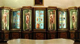 Museo dello Studio del Nono Centenario - >Bologna
