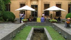 Museo C. Leone - >Vercelli