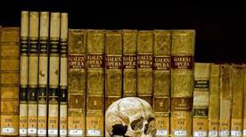 Museo di Anatomia Umana - >Napoli