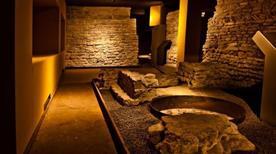 Museo Civico Archeologico e di Scienze Naturali F. Eusebio - >Alba