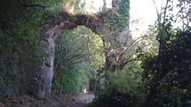 Monumento Naturale Galeria Antica - >Rome