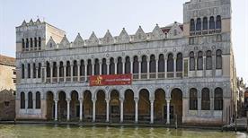 Museo Civico di Storia Naturale - >Venezia