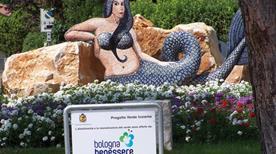 Angolo B Punta Marina - >Punta Marina