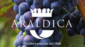 Araldica Castelvero S.C.A. - >Castel Boglione